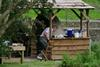 Clive hard at work preparing the wood-fired oven